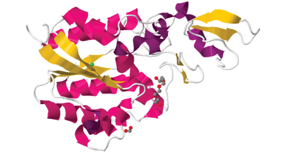 Crystal structure, protein DSM2588 [Chitinophaga pinensis]